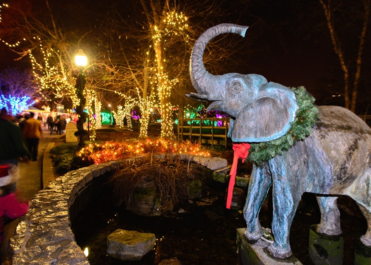 Enjoy The North Pole At The Saint Louis Zoo S Wild Lights