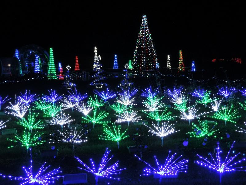 Garden Glow Lights Up Missouri Botanical Garden Starting Nov 17th Boom Magazine 2018